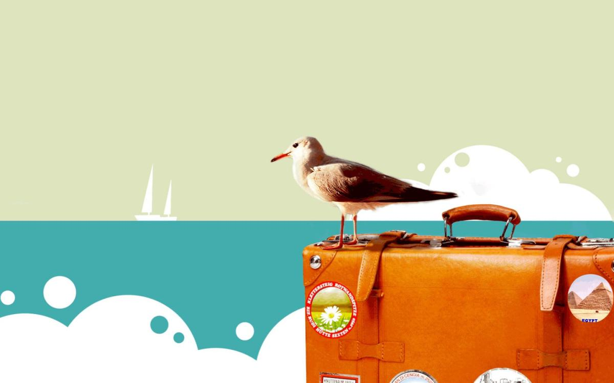 Happy-Travel-Bird-Wallpaper.jpg