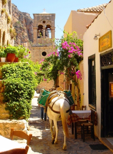donkey-in-monemvassia-greece.jpg
