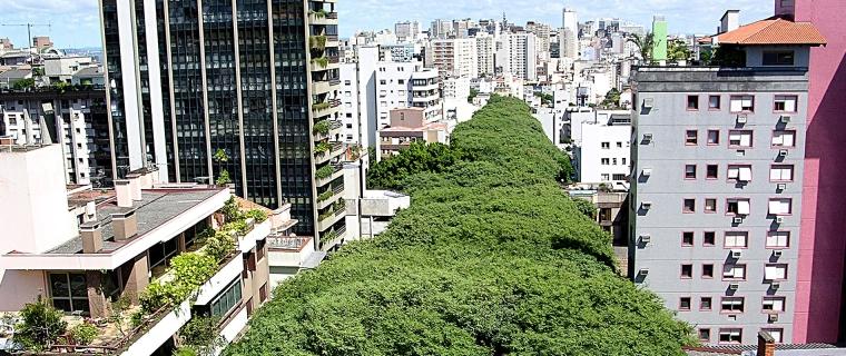 Rua-Goncalo-de-Carvalho-Brasile-IMG-SLIDER