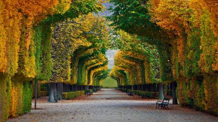 Schönbrunn-Palace-gardens-in-Vienna-Austria-20180806.jpg